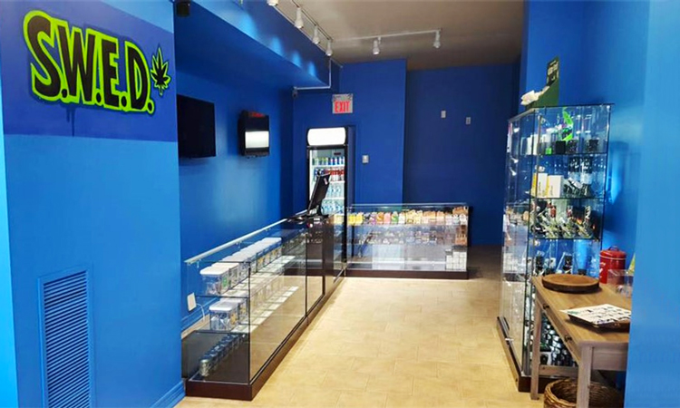 SWED Society Danforth medical marijuana dispensary in Toronto, Ontario, Canada